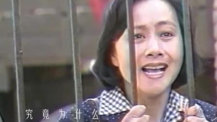 80年代经典老歌,毛阿敏《渴望》太好听,深情的歌声惊艳了岁月!