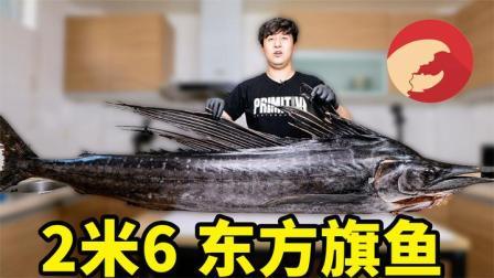试吃东方旗鱼,除了人类没有天敌,鲨鱼都沾不上它的边
