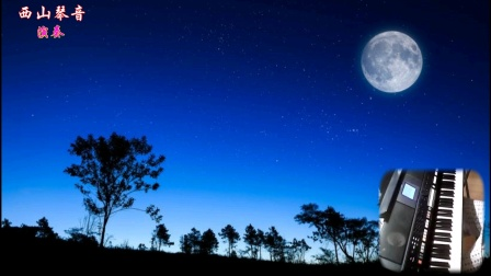 电子琴演奏:月光小夜曲