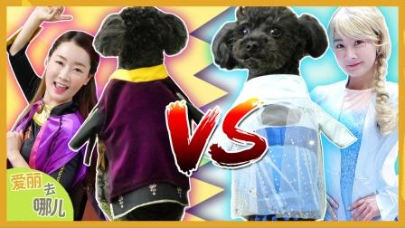 艾莎公主和安娜公主合体?给可爱宠物狗狗做漂亮衣服