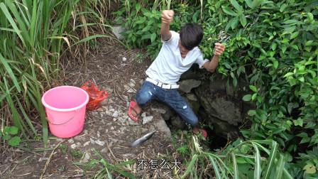 小明挖一斤蚯蚓往深坑打窝,只用一根鱼线就连上几条靓货,开心了