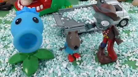 豌豆射手都藏起来了乔治就一直吵吵,把僵尸引过来了,乔治真是坑队友啊