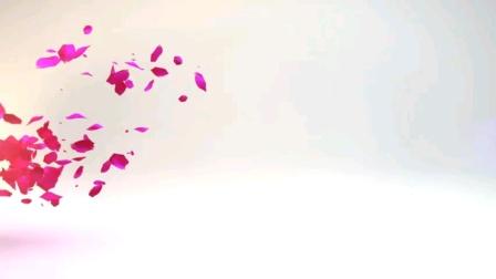 健康快乐彩视作品集:庚子年8日17日游览广州塔世界名人蜡像馆掠影