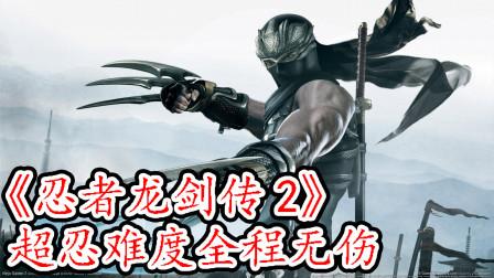《忍者龙剑传2》超忍难度全程无伤【极限堂攻略组-复活斩】(下)
