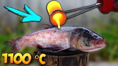 老外奇葩测试,用岩浆烤鱼看是什么味道?鱼:愿天堂没有岩浆!