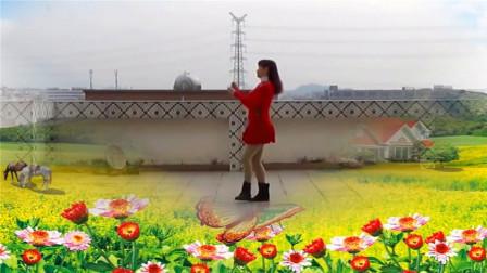 中老年简易32步广场舞《宝贝结婚吧》DJ