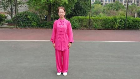 杨式40式太极拳
