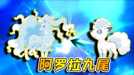 宝可梦剑盾98:换到一只阿罗拉的六尾,成功把它进化成九尾!