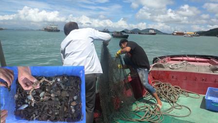 小明旅行被套路,花300块坐船出海捕鱼,最后的渔获直呼亏大了