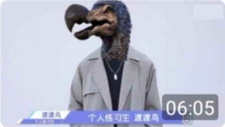 【方舟百科】菜鸡——渡渡鸟