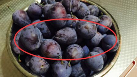 越来越多人患白血病,只因常吃这水果,难怪医生从来都不吃