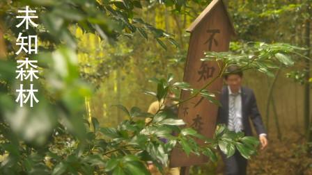 《未知森林》:儿子走失在森林中,受神明指引找到儿子
