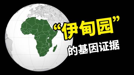 "Y染色体亚当和线粒体夏娃分别是谁?""伊甸园""在非洲的基因证据!"