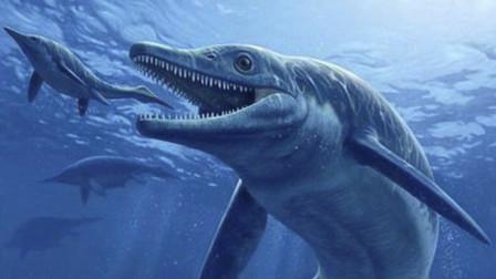 三叠纪海洋的杯椎鱼龙,体长10米左右,牙齿锋利无比