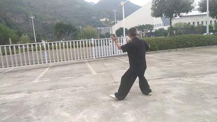 42式杨式太极拳练习