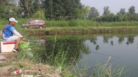 混养池测试钓鱼王通杀底窝,新型蒸汽鱼饵鱼获爆护