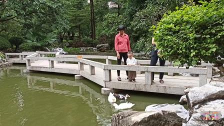 中心湖美景 2020.9.27