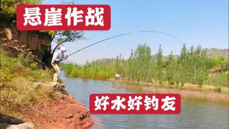 58期:秋日悬崖作战,鱼的冲劲依然很大,渔获不卖但可以送