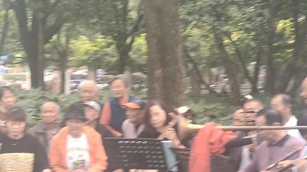 浦江县文化广场戏迷娱乐队《花头台》