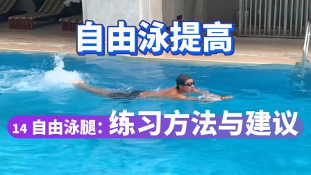 【自由泳提高】14.自由泳腿:练习方法与建议|梦觉教游泳