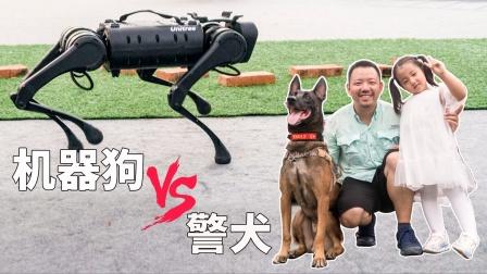 娃最喜欢的网红警犬和机器狗,如果选一个送你,你选哪个?