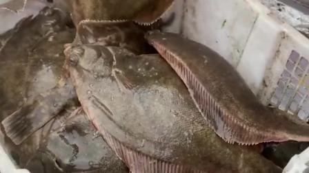 这么大嘴巴的鱼被称为小嘴鱼,活了二十多年,至今也没明白称号的意思!