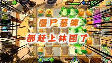 植物大战僵尸:一地的白菜没有被猪拱,却被建成了墓地!