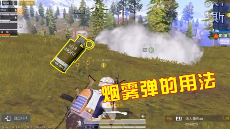 和平精英:烟雾弹的3种实用用法,想上战神就得先学会这些!