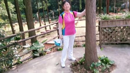 惠州市江北念佛拍手操队:《好姐妹相聚广州白云山》,2020年8日20日至21日广州白云山西门和保利山庄掠影。