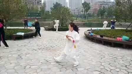 宝龙晨练点习练24式养生剑