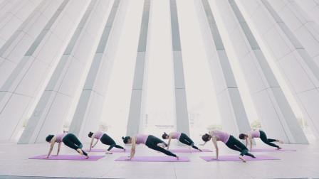 美女姐姐们户外跟随音乐来组瑜伽,感觉心灵都会升华!