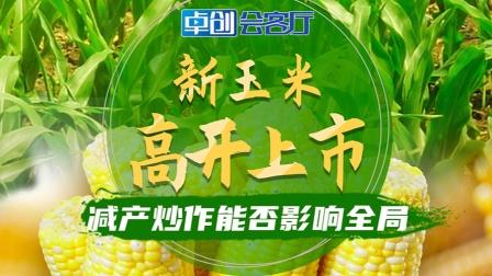 卓创会客厅—新玉米高开上市  减产炒作能否影响全局?