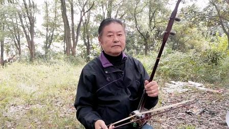 二胡独奏,我的祖国,谢胜德演奏,刘炽作曲