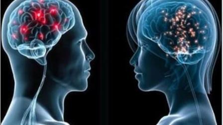 大脑只开发了10%是真是假?科学家推测,大脑中存在量子效应!