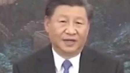 习近平:成千上万中国女性用担当和奉献换来山河无恙!