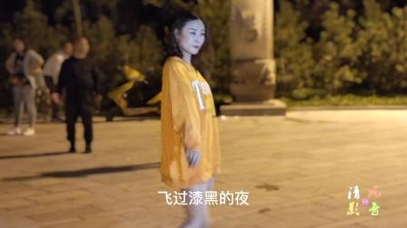 大城巴鼎广场舞 月下情缘