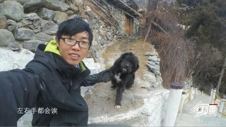 在尼泊尔山区寺庙,发现一只会跟人握手的小狗,看着还有点像藏獒