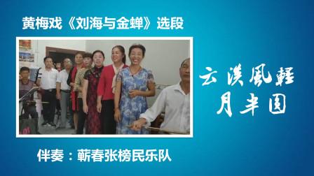 黄梅戏《刘海戏金蟾》选段-云淡风轻月半圆(蕲春张榜民乐队)