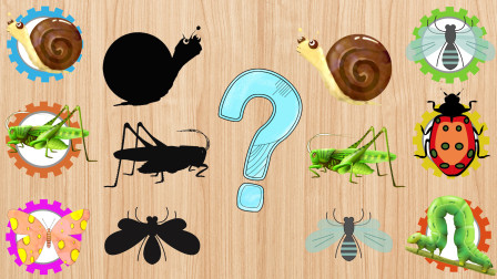 可爱的小昆虫们迷路了,小朋友你们能帮他们找到属于自己的位置吗?