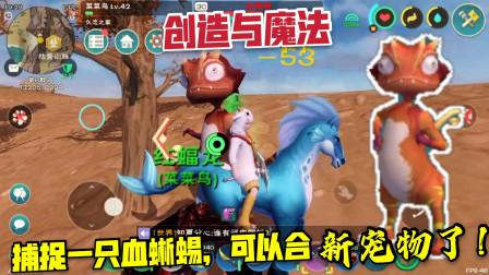 创造与魔法13:准备融合蓝蝠龙,驯化了一只血蜥蜴,极品!