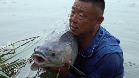 《游钓中国6》第20集 安徽淮北塌陷区 雨中守巨青