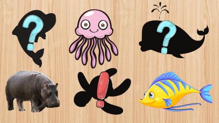 海洋动物对号入座,小朋友快来给小动物对号入座吧!
