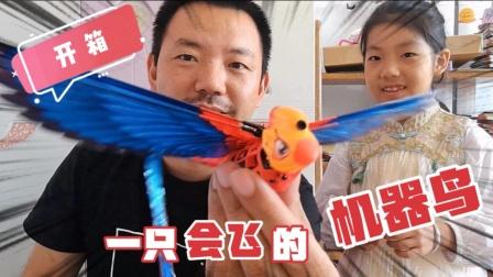 玩具开箱!现在的小学生太幸福,连会飞的机器鸟都有人发明了