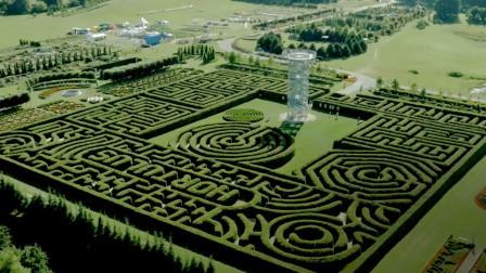在多勃兹卡的Hortulus Spectabilis园艺园探索欧洲最大的迷宫
