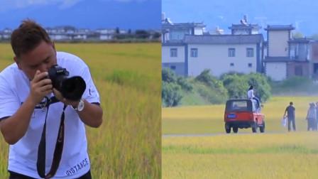 背靠苍山洱海!大理3千亩金色稻田,每天吸引8000游客打卡