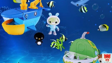 海底小纵队 亲子玩具视频之会法术的青蛙公主