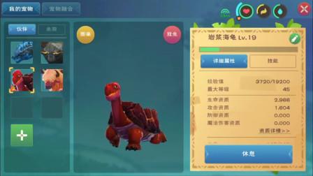 创造与魔法16:终于合成了红巨人,岩浆海龟吃了好多经验!