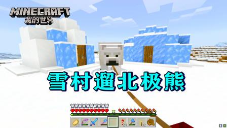 我的世界281:神奇的雪村!北极熊可以拴住了,树长在沙子上!