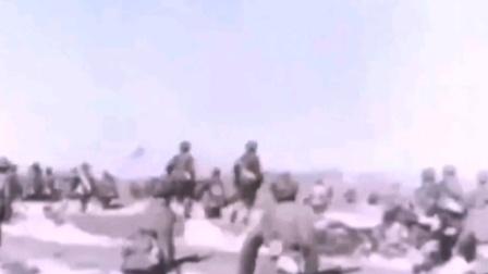 1948年11月2日东北野战军解放沈阳!