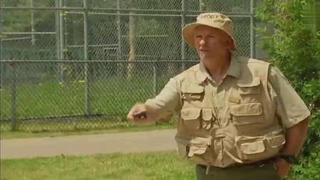 爆笑恶作剧:动物园可怕的隐形老虎,吓坏来参观的游客